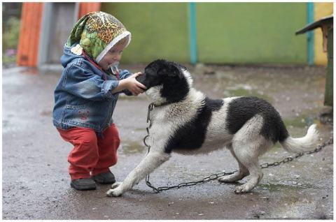 child holding a dog's mouth shut