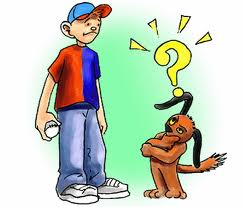 cartoon of dog looking confused