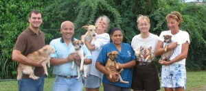 staff at vieques humane society