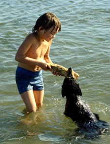 young boy and dog playing with a stick in the ocean