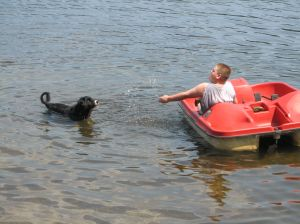 boy in a paddleboat splashing a black dog