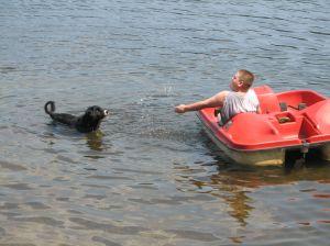 boy in a paddleboat splashing a black dog