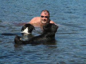 2 black dogs in the water playing with a man
