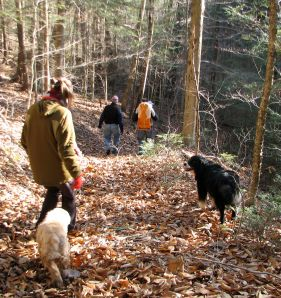 2 dogs and people walking in the woods