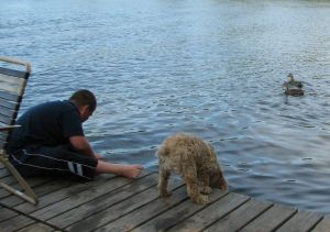boy and dog looking for fish off a pier