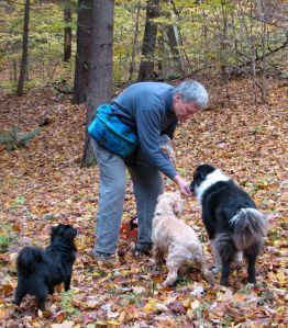 man feeding treats to dogs in the woods